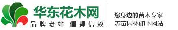 华东花木网