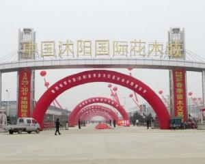 中国沭阳国际花木城怎么样